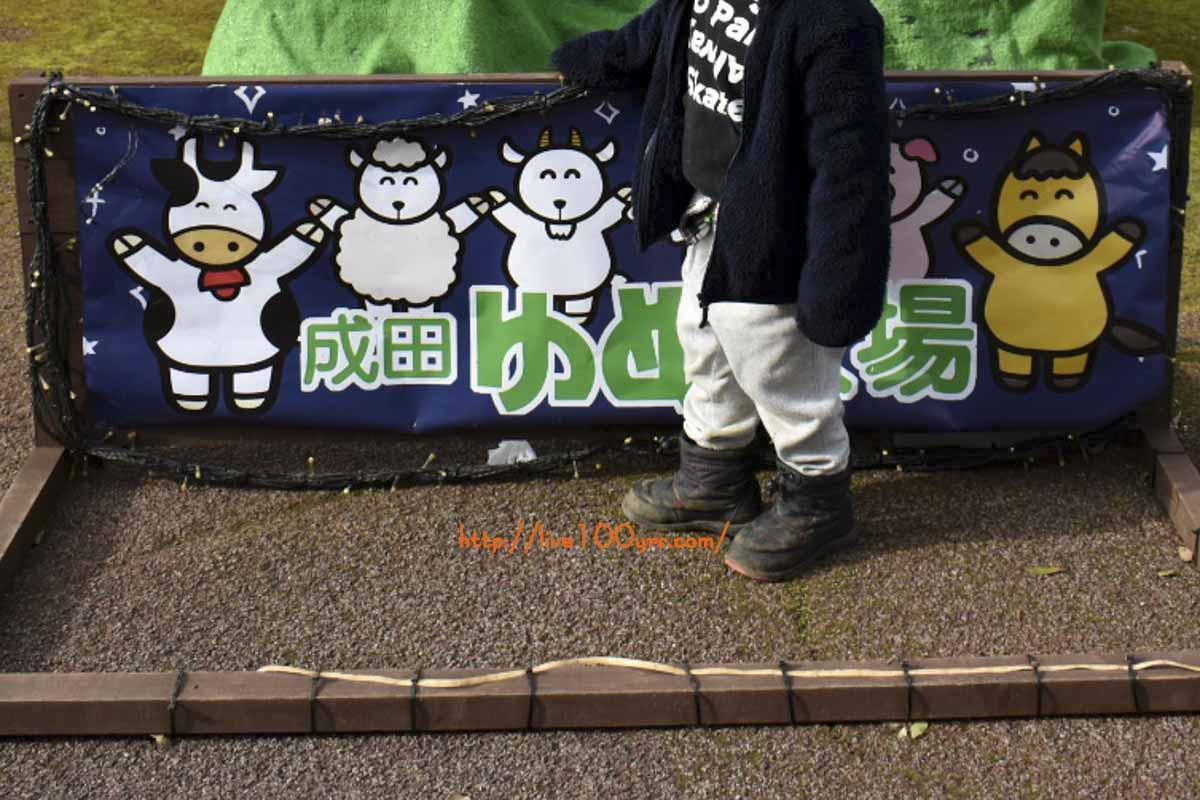 4歳の息子と成田ゆめ牧場へ