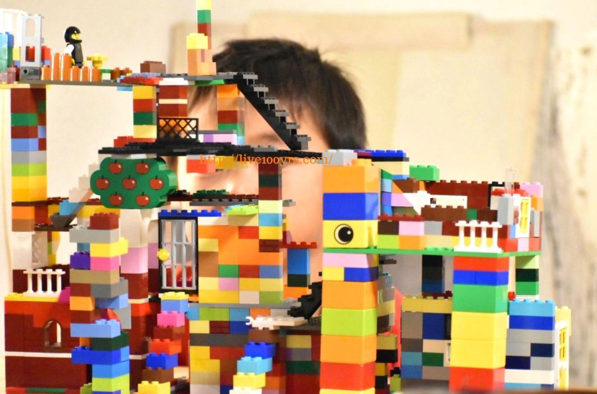 雨の日に子供とレゴで遊ぶ