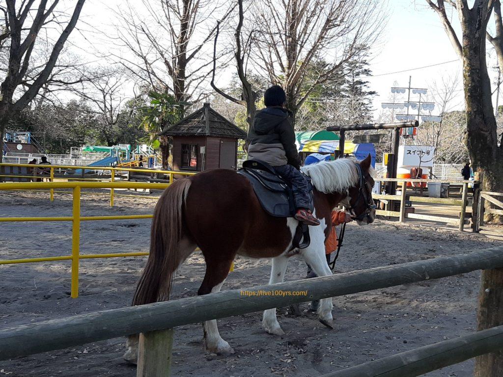 千葉県野田ポニー牧場内で乗馬体験