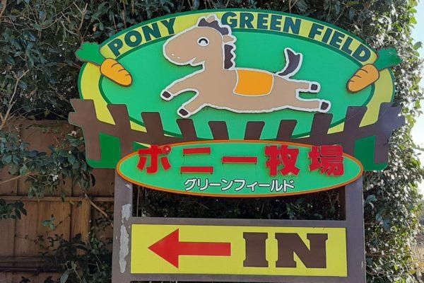 千葉県野田ポニー牧場